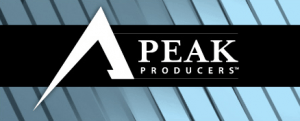 Brian Buffini's Peak Producers
