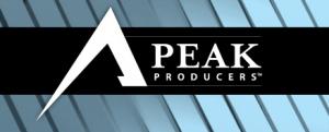 Brian Buffini's Peak Producers